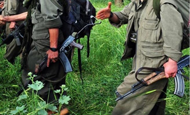 PKK'nın kırmızı bültenle aranan  sözde 'İskandinavya sorumlusu' yakalandı