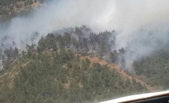 Hatay'daki orman yangınında son durum