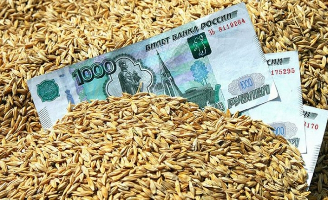 Ruble ile buğday dönemi başlıyor