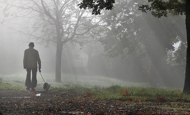 'Burjuva eğilimi' denilerek köpek gezdirmek yasaklandı