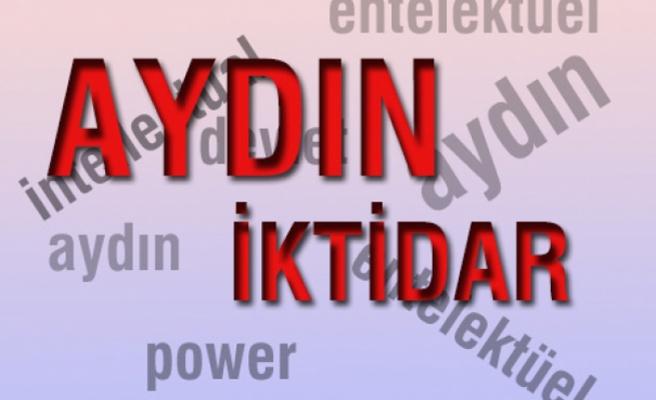 Türkiye'de aydın-iktidar sorunu