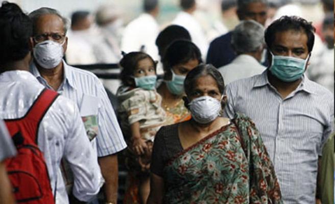 Hindistan'daki domuz gribi salgını
