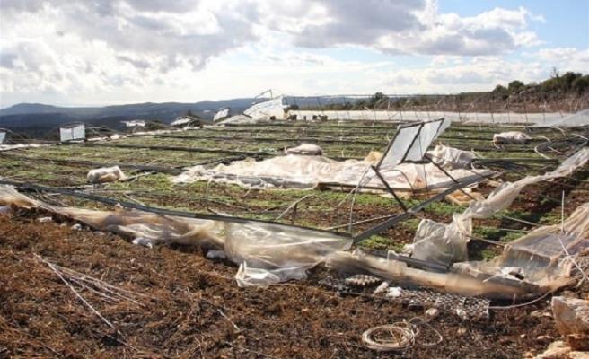 Pakdemirli'den çiftçiye afet desteği müjdesi