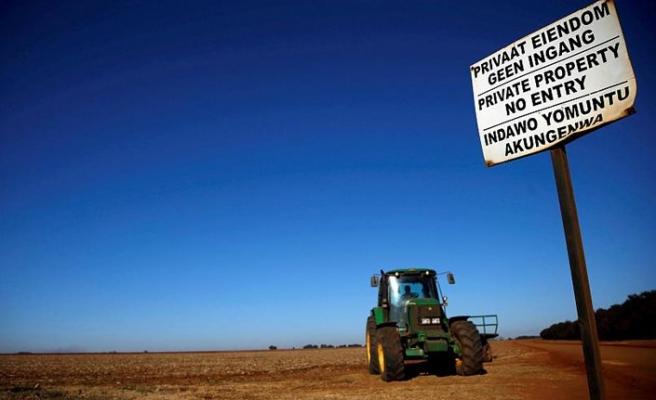 Güney Afrika'da Modern Sömürgeciliğin Alâmet-i Fârikası: Çiftlikler ve Sahipleri Avrupalı Yerliler