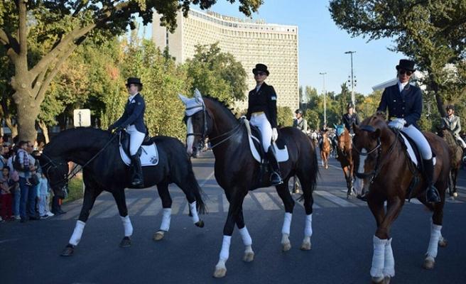 Özbekistan'da atlara kimlik çıkarılacak