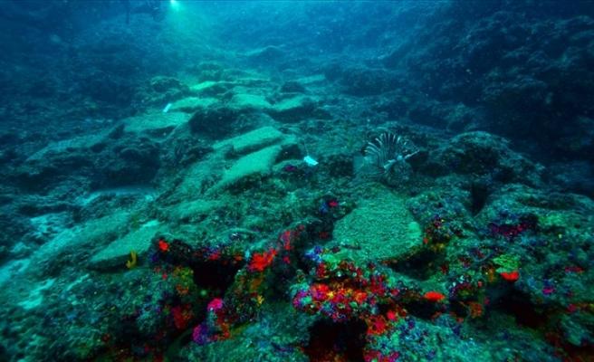 Türkiye'de bulunan dünyanın en eski gemi batığı UNESCO'da tanıtıldı