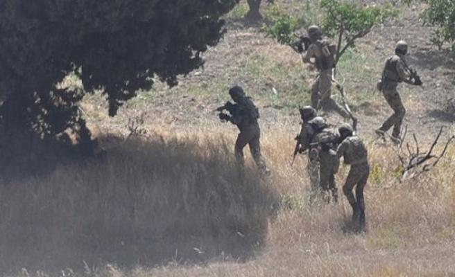 Lice'de operasyon, 5 terörist etkisiz hale getirildi