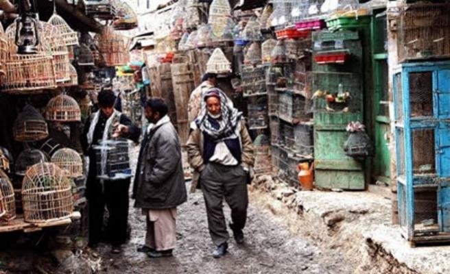 Pakistan'da kuş kafesi ihalesi için soruşturma başlatıldı
