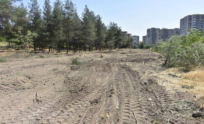 HDP'li Batman Belediyesi 170 ağacı kesti