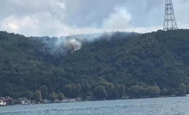 İstanbul Anadolu Kavağı'nda ormanlık alanda yangın