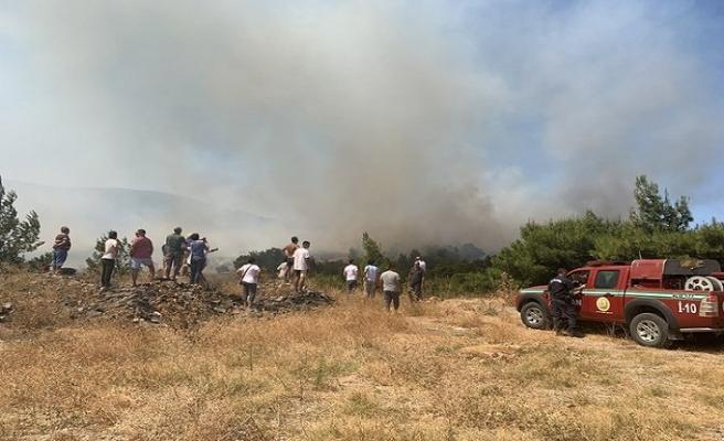 İzmir Urla'da orman yangını, bölgeden tahliye başladı