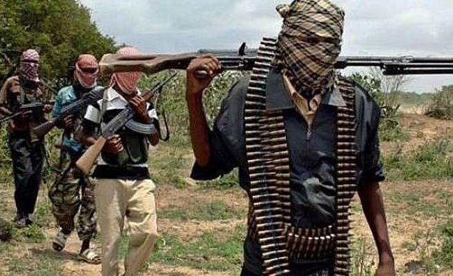 Nijerya'da hayvan hırsızları sivillere saldırdı: 17 ölü