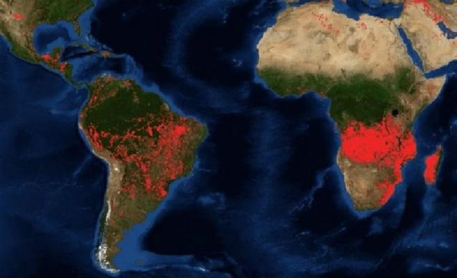 Dünya Afrika'daki Orman Yangınlarına Sessiz Kaldı