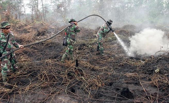 Endonezya'daki orman yangınlarıyla ilgili 185 kişi gözaltına alındı