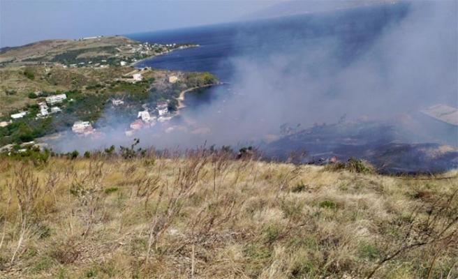 Erdek'teki yangında 15 dekar zarar gördü