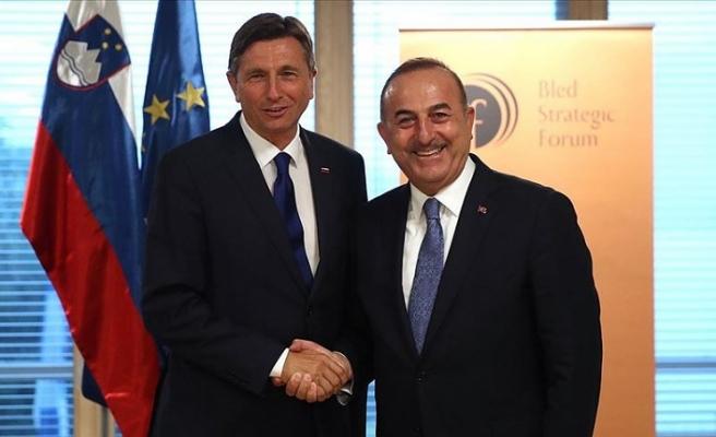Dışişleri Bakanı Çavuşoğlu: Slovenya ile ekonomik ilişkilerimizi ve yatırımlarımızı artıracağız