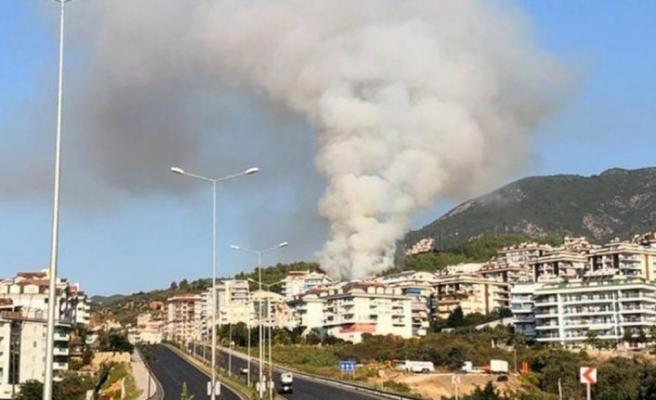 Antalya'da orman yangını: 10 dönüm alan zarar gördü