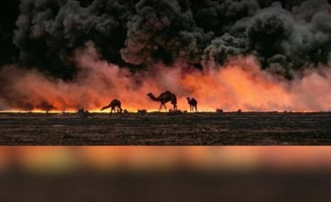 Avustralya Da Orman Yanginlari Ve Deve Katliamlari Osman Sahin