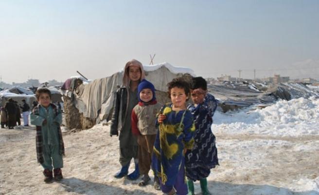 Soğuk hava Logar'da beş kişiyi öldürdü