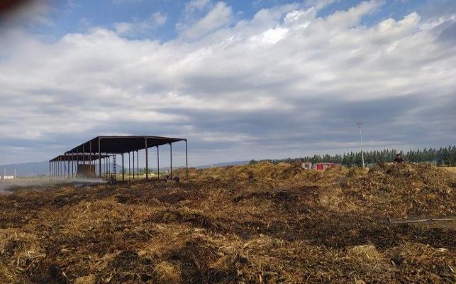 Aydın'daki çiftçinin bayramı zehir oldu..600 ton saman kül oldu