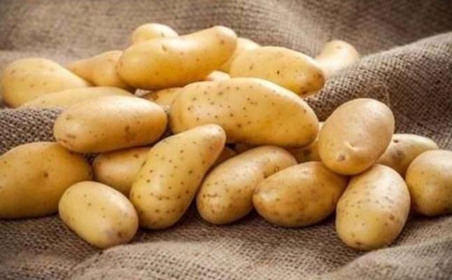 Soğan ve patateste ihracat için ön izin şartı kaldırıldı