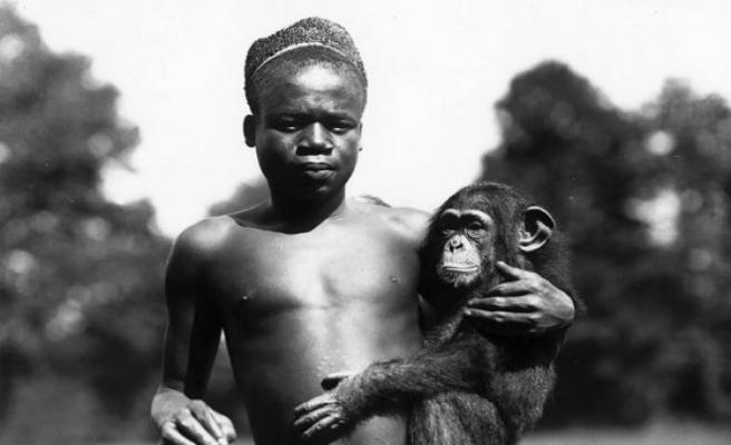 ABD  Bronx Hayvanat Bahçesi'nden 114 yıl sonra Ota Benga özrü