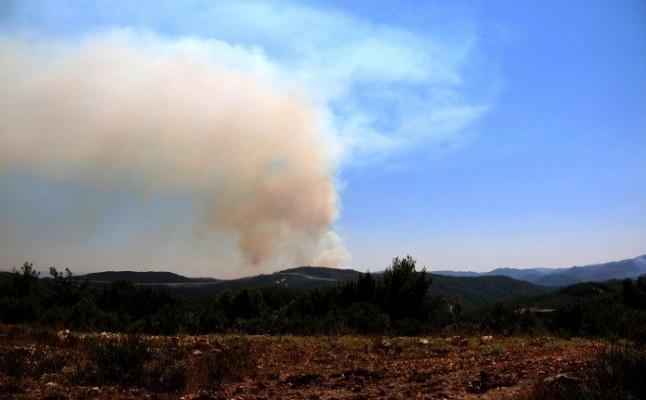 Hatay'ın Suriye sınırında orman yangını