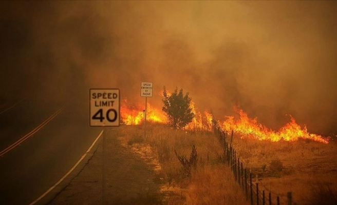 Trump California'daki yangınları 'büyük afet' ilan etti