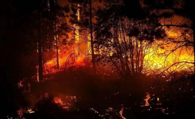 California'da 25 noktada süren yangınlara 14 binden fazla itfaiyeci müdahale ediyor