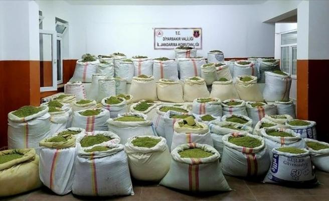 Zehir tacirlerine darbe: 1 ton 756 kilogram esrar ve 90 bin kök Hint keneviri ele geçirildi