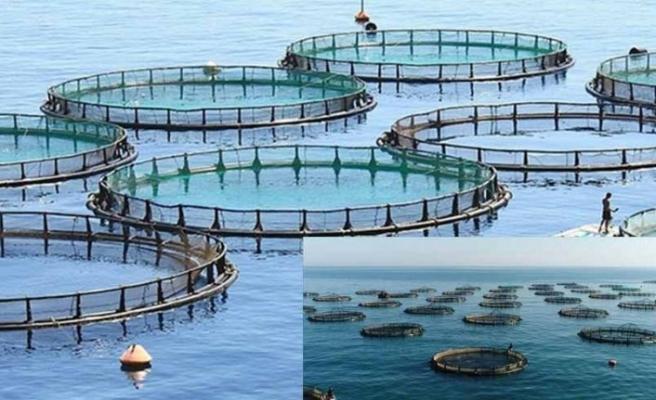 Balık çiftliklerine yasak getirildi