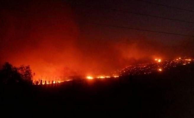 Beşşar Esed rejimi orman yangınlarını kontrol altına alamıyor
