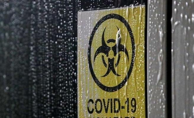 Dünyada Kovid-19 vaka sayısı 53 milyonu geçti