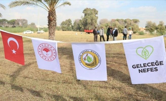 'Geleceğe Nefes' kampanyasında Libya'da 1000 fidan dikildi