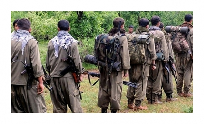 Terör örgütü PKK'da çözülme hızlandı: 4 terörist teslim oldu!