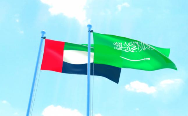BAE ve Suudi Arabistan monarşileri için demokrasi karşıtlarını destekliyor