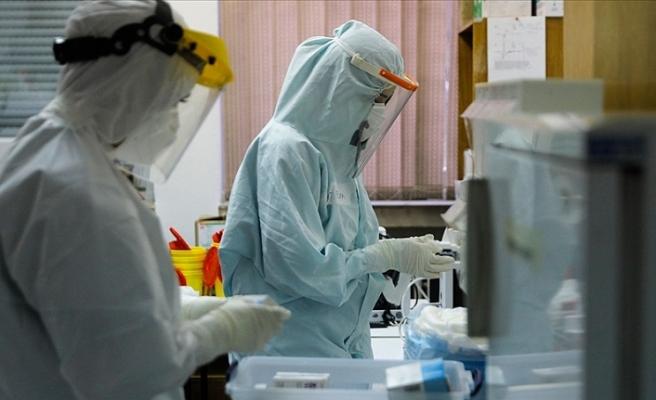 Dünya genelinde Kovid-19'dan iyileşenlerin sayısı 50 milyonu geçti
