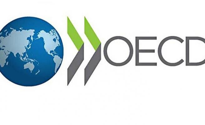 OECD Almanya'yı uyardı!