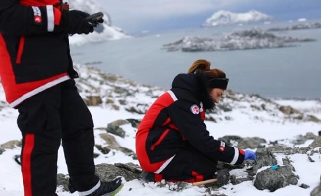 Türk bilim insanları kutup seferlerinde 5 bakteri keşfetti
