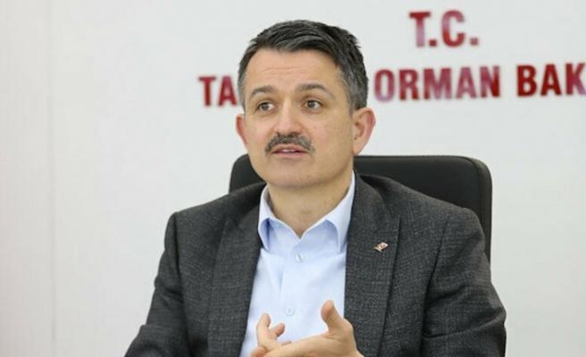 Bakan Pakdemirli: Global pazarlar Türk girişimcileri bekliyor