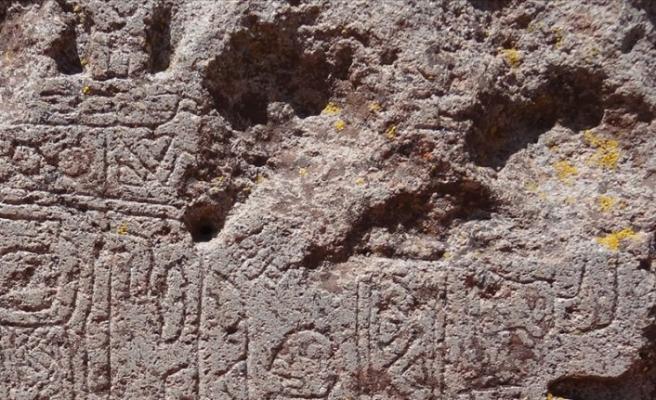 17 bin 300 yıllık kanguru çizimi bulundu
