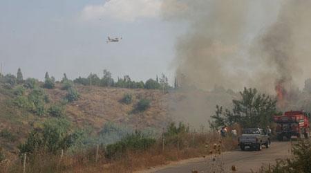 Çanakkale'deki orman yangını köye sıçradı