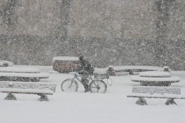 Macaristan'da soğuk hava: 35 kişi öldü