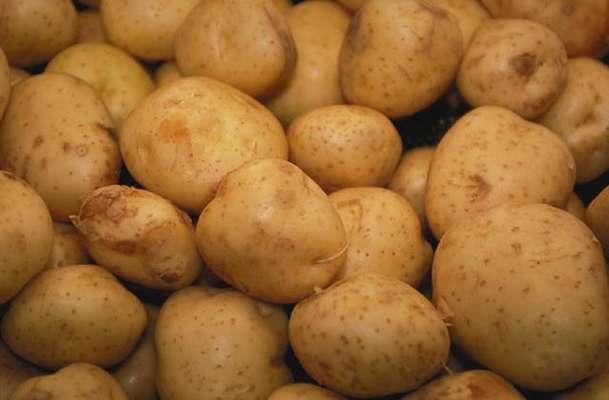 Çürük patates gazı bir aileyi yok etti