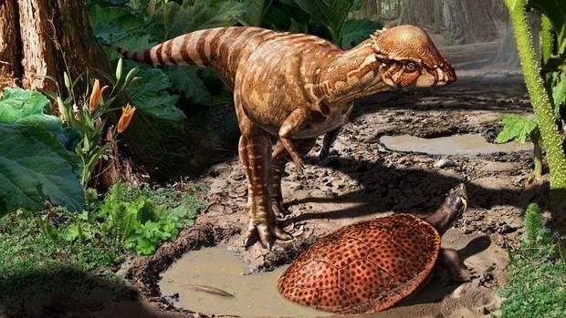Yeni bir dinozor türü tanımlandı