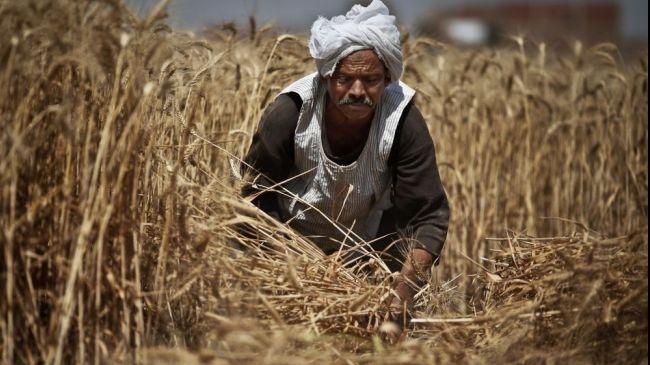 Milyonlarca çiftçinin beklediği ödenek çıktı
