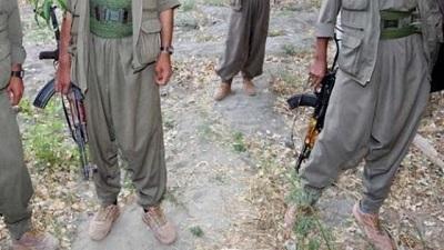 10 PKK'lı teslim oldu!