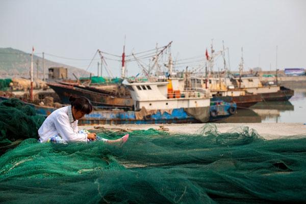 Çin balıkçı filoları dünyayı tehdit ediyor