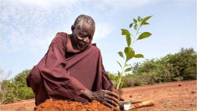Çölleşmeyi geleneksel usullerle yenen adam!-FOTO