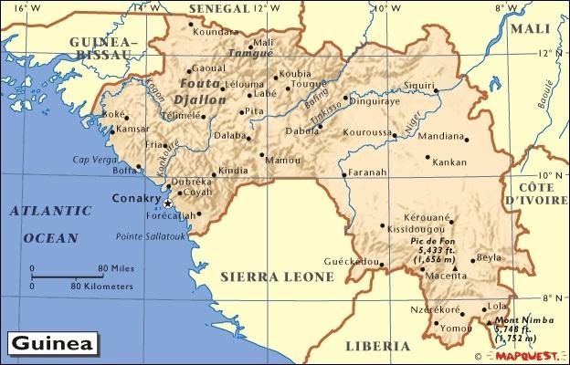 Gine'de Ebola virüsü yayılıyor